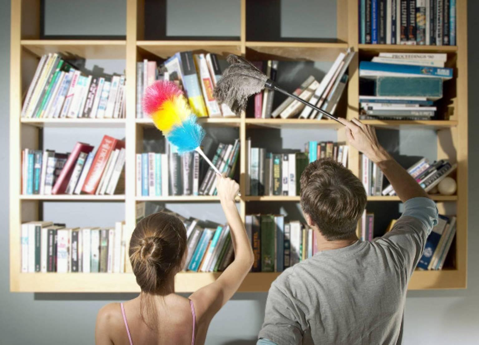 Убираться с помощником - проще и быстрее. Фото с сайта static.headline.kz