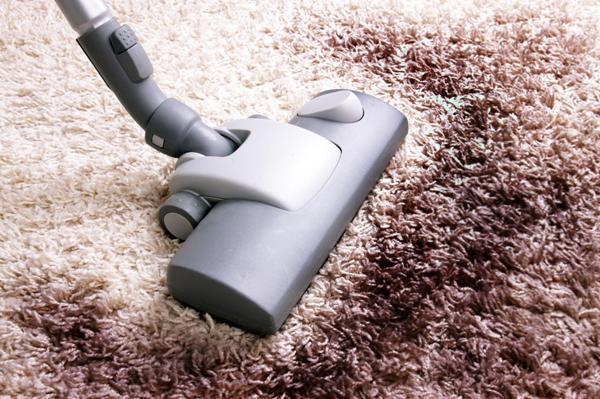 Пылесос пригоден для уборки любого типа коврового покрытия. Фото с сайта cdn-2.tuttopercasa.it