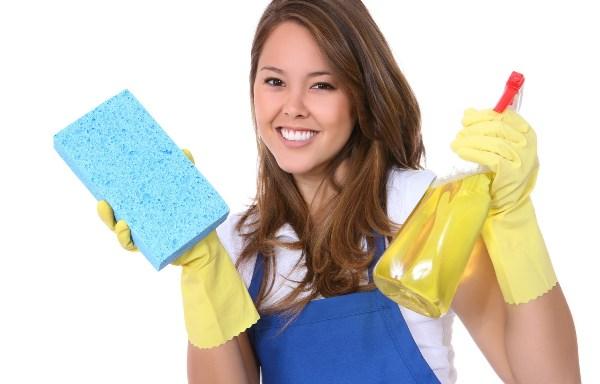 Мытье дверей мало отличается от обычной уборки пыли. Фото с сайта www.novorab.ru
