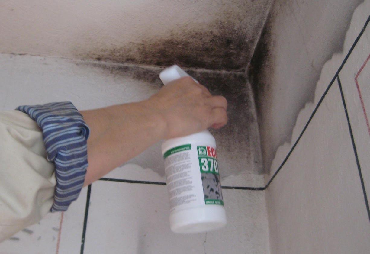 Лучше использовать специальные средства для обработки. Фото с сайта qiqru.org