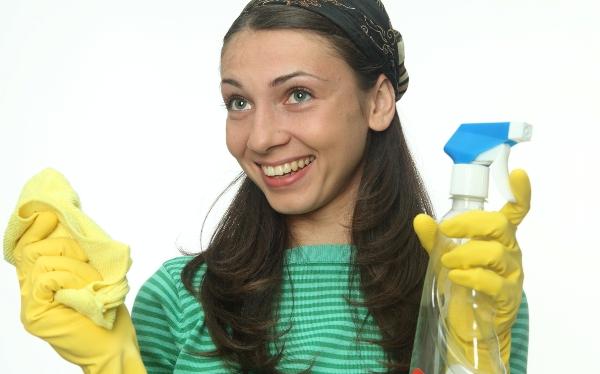 Не пренебрегайте необходимостью ежедневной влажной уборки. Фото с сайта www.wellbuzz.com