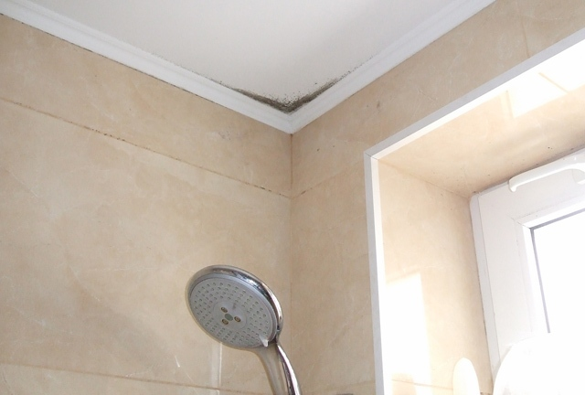 Расценки на заделку швов на потолке