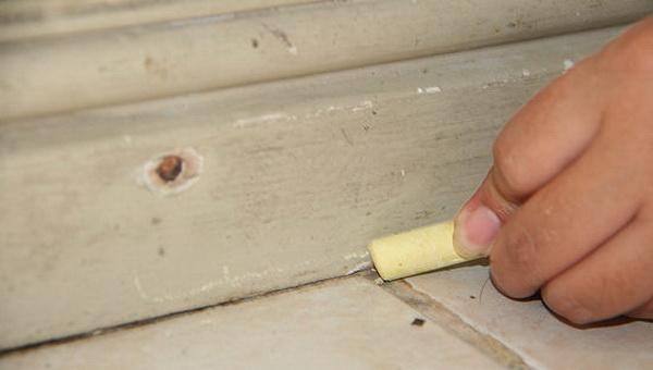 Муравьи здесь больше не живут: какие химические и народные средства помогут избавиться от муравьев в квартире