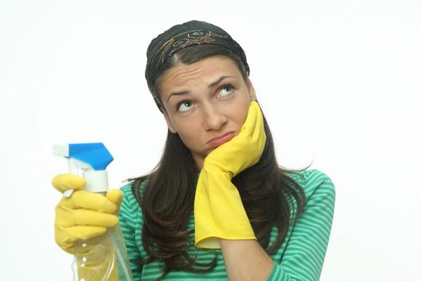 Химические и народные средства, которые помогут избавиться от мошек в квартире (лоджии), в комнатных цветах